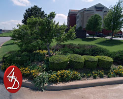 4 D Landscape Company Lawton Oklahoma